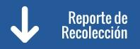 Reporte de Recolección